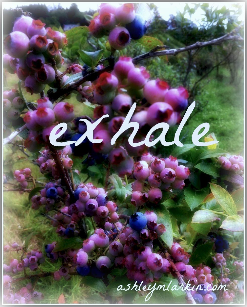 Exhale4